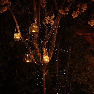 Lighting trees, planting , shrubs & borders