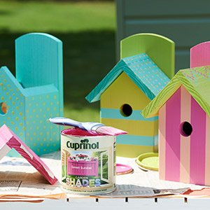 Painted bird boxes