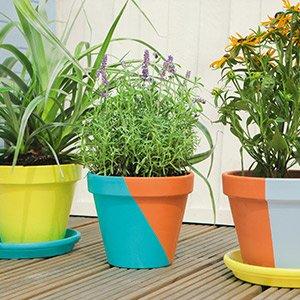 Painting terracotta plant pots