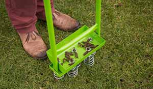 Lawn aeration in winter