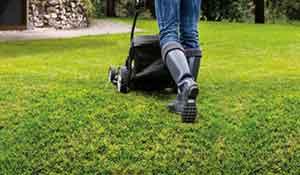 Lawn mowing in winter