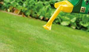 Use lawn feed