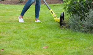 Trim the edges of your lawn