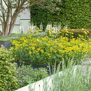 contemporary garden 300x300 image