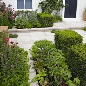 courtyard garden 300x300 image