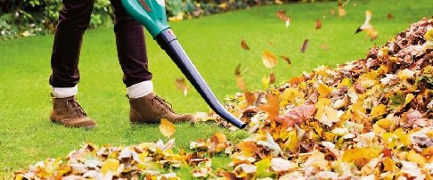 Care for your lawn in autumn