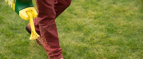 April lawn blog
