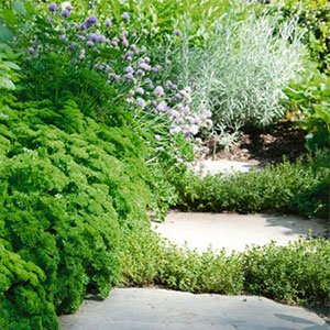 relaxed garden style 300x300 image