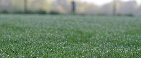 Lawn maintenance in spring