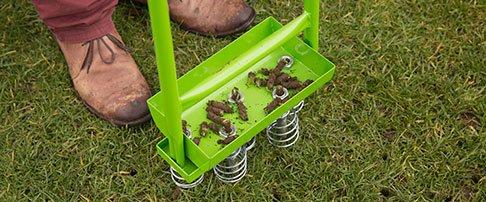 Expert lawn advice - November
