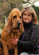 Farlap Bloodhounds