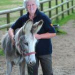 The Flicka Foundation Horse & Donkey Sanctuary