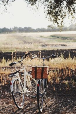 Top Tips for Buying a Vintage Bicycle