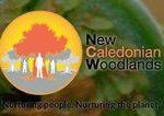 New Caledonian Woodlands