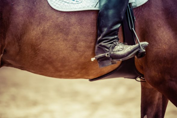 Dressage: An Equine History