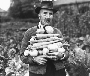 allotment man Allotment Resources