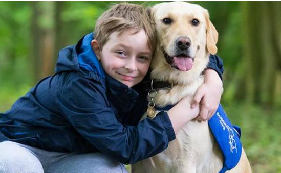 Support Dogs, helping keep young children safe