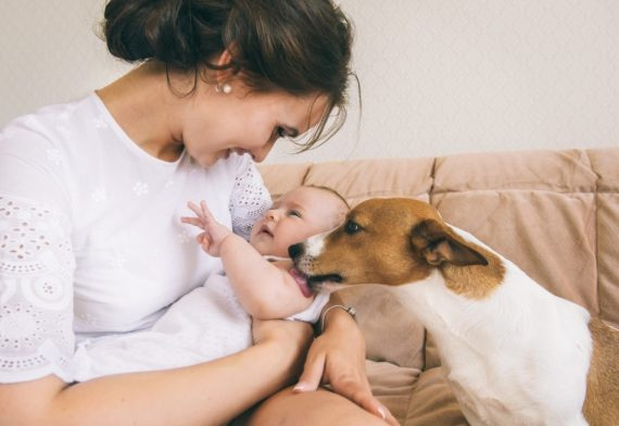 9 Ways To Introduce Your Dog To Your New Baby