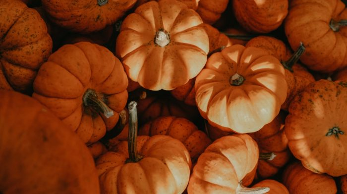 Preloved's Guide to Uses for Leftover Pumpkin