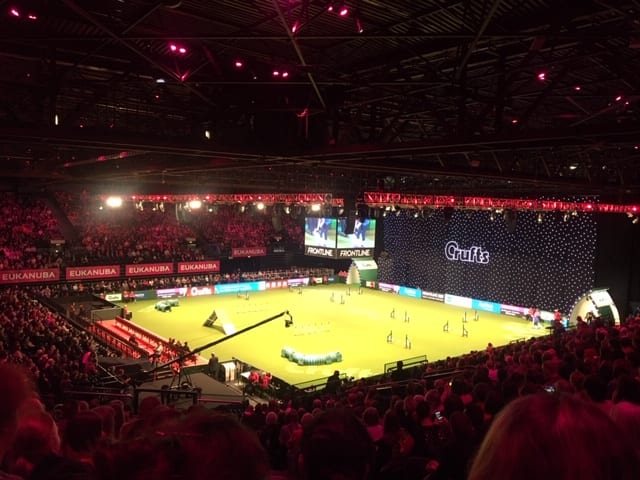 A Day Out At Crufts