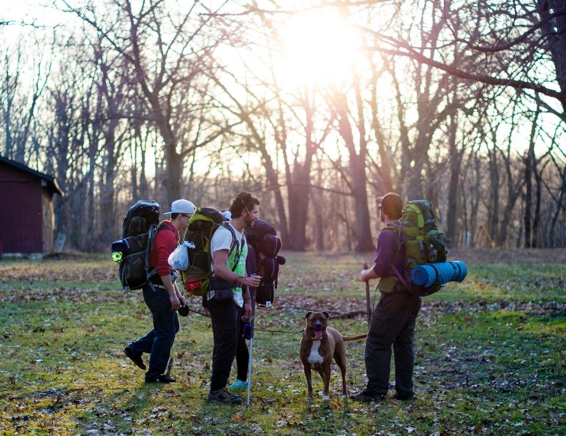 Top Dog Friendly Camping Tips