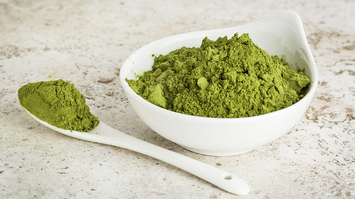An introduction to Moringa