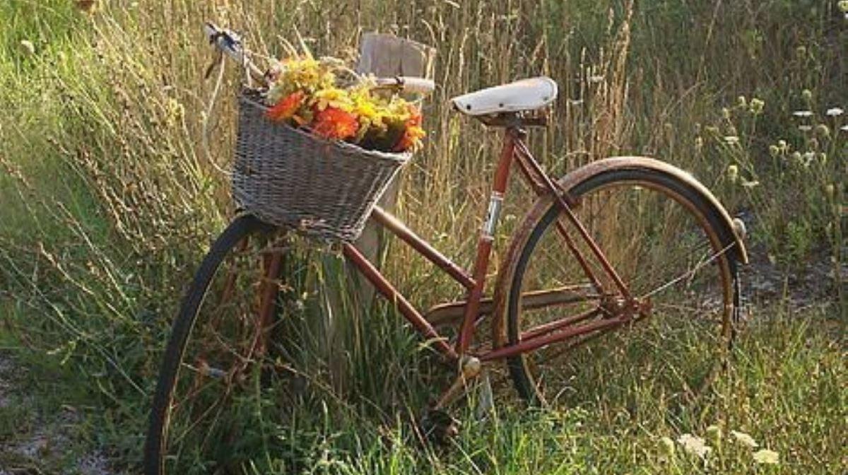 MyVitamins Picks: 10 Awesome UK Bike Rides