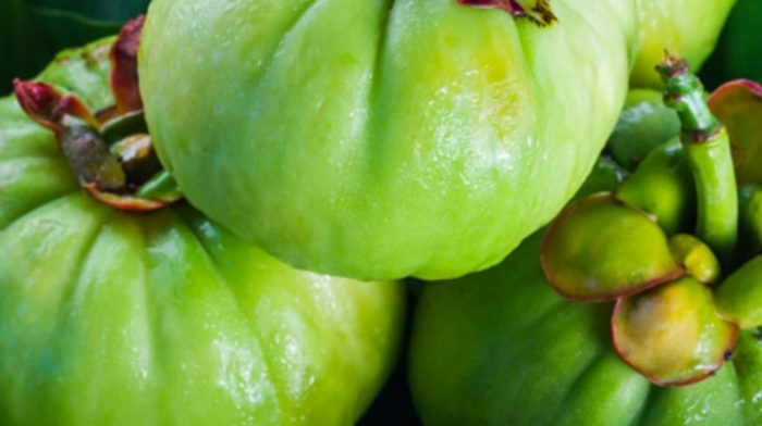 The Benefits of Garcinia Cambogia