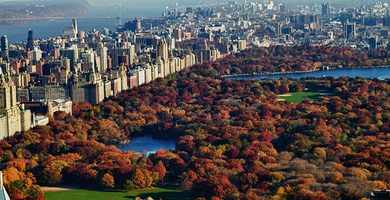 New York - isardasorensen