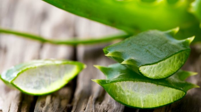 7 Benefits of Aloe Vera