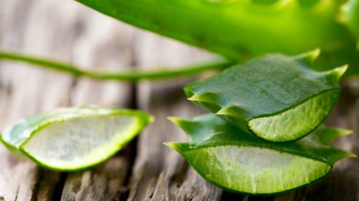 7 Benefits of Aloe Vera