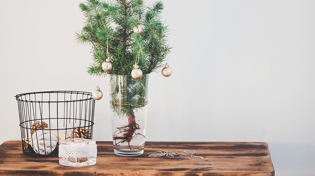 The Ultimate Guide to Christmas Decorating On a Budget