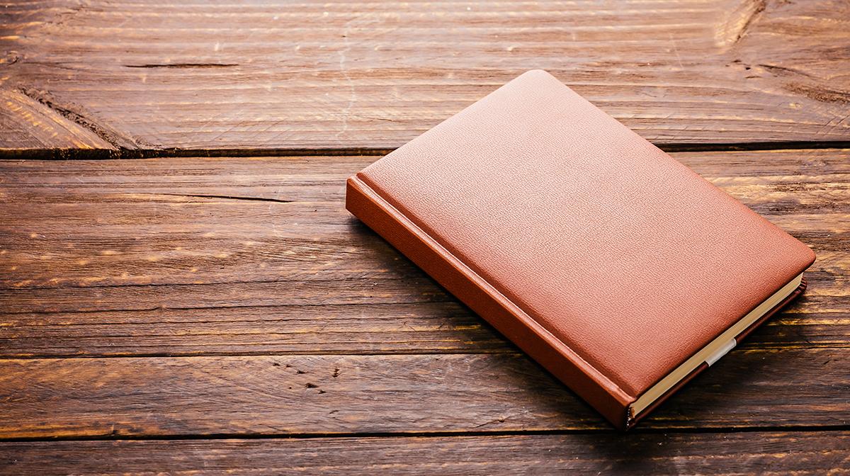 Mankind Diaries