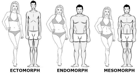 mesomorph1