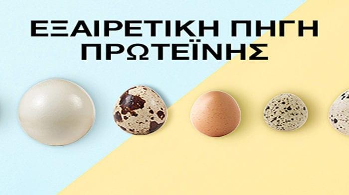 Αυγά: Όλα τα είδη και τα πλεονεκτήματα για το Πάσχα