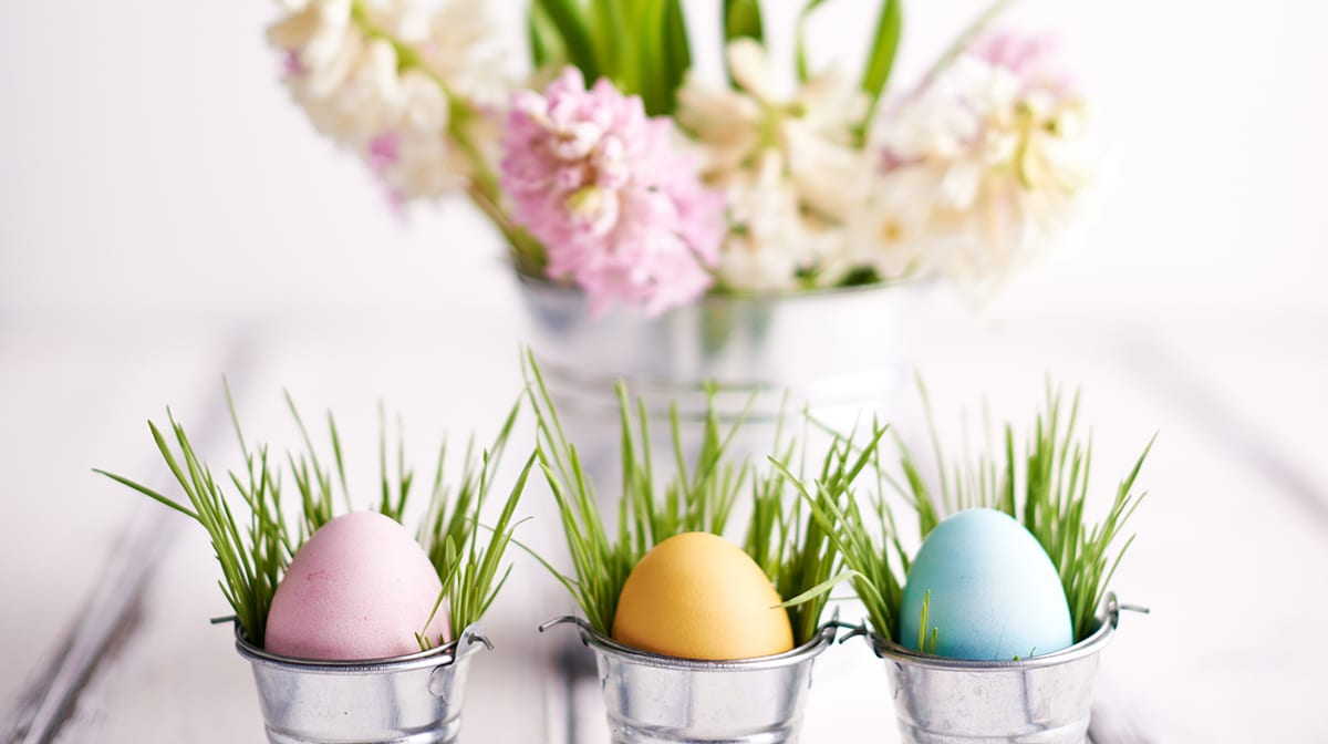 Geschenktipps zu Ostern