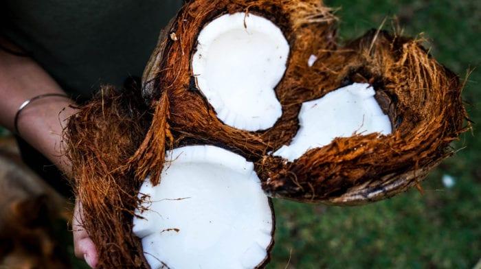 Kokosöl für die Haare: Die 5 besten Produkte