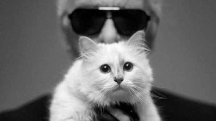 National Cat Day with Karl Lagerfeld and Choupette