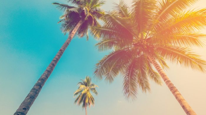 Take This Quiz To Find Out Where You Should Go On Holiday This Summer
