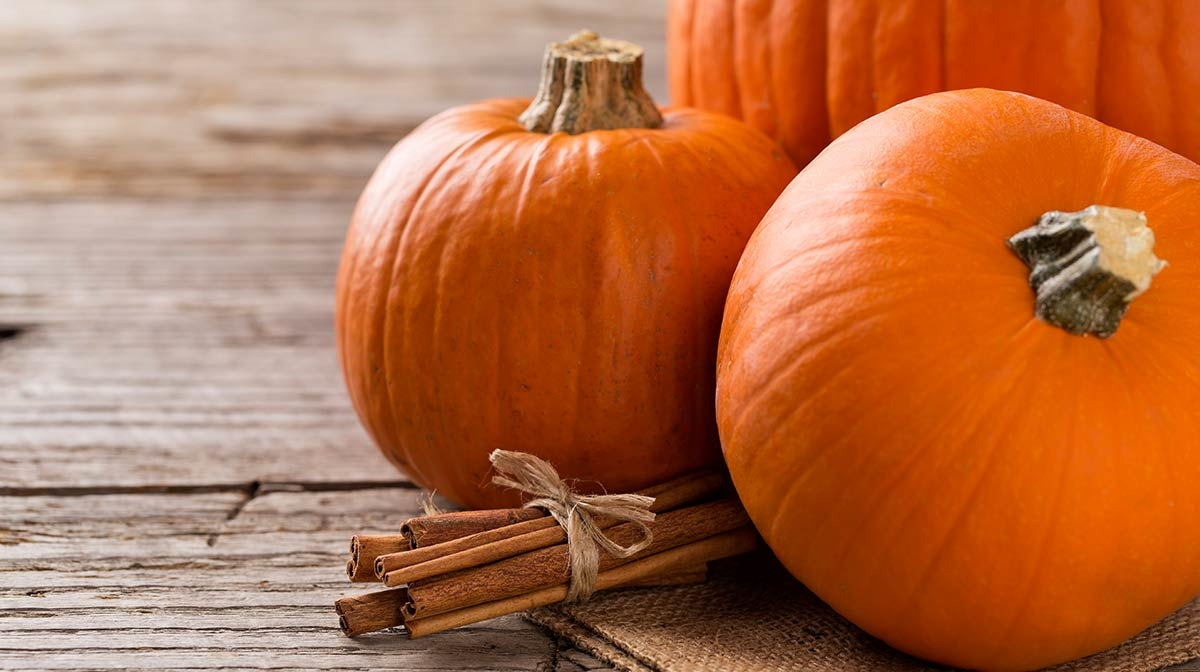 Pumpkin Beauty Halloween Treats