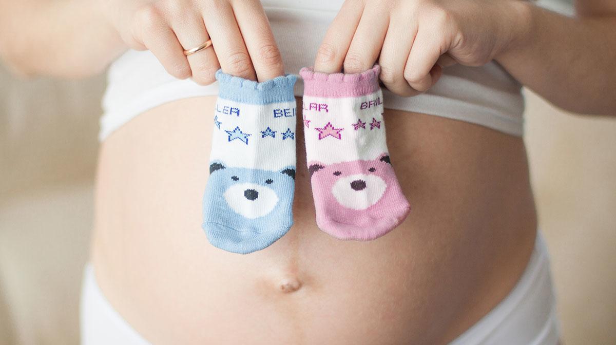 Enjoying Pregnancy, Trimester by Trimester