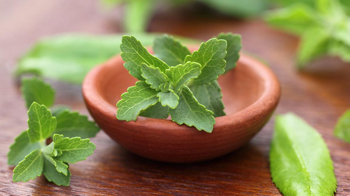 Exante #FoodFactFriday Stevia