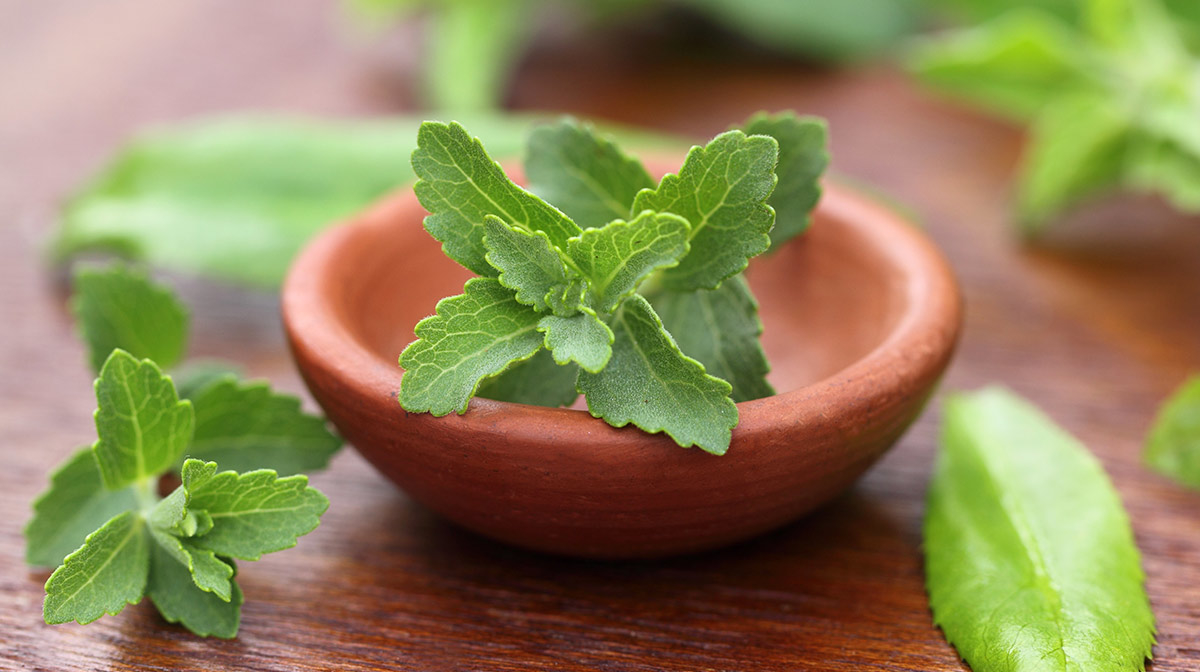 #FridayFoodFact | What is Stevia and is it Bad for you?