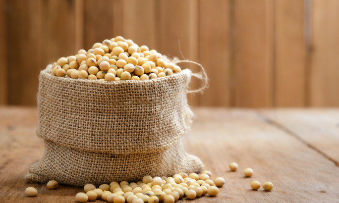 bag of soybeans
