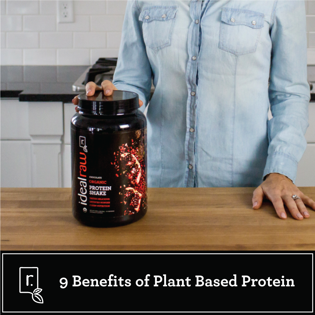 benefits of plant based protein