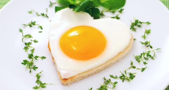 Æggehvider