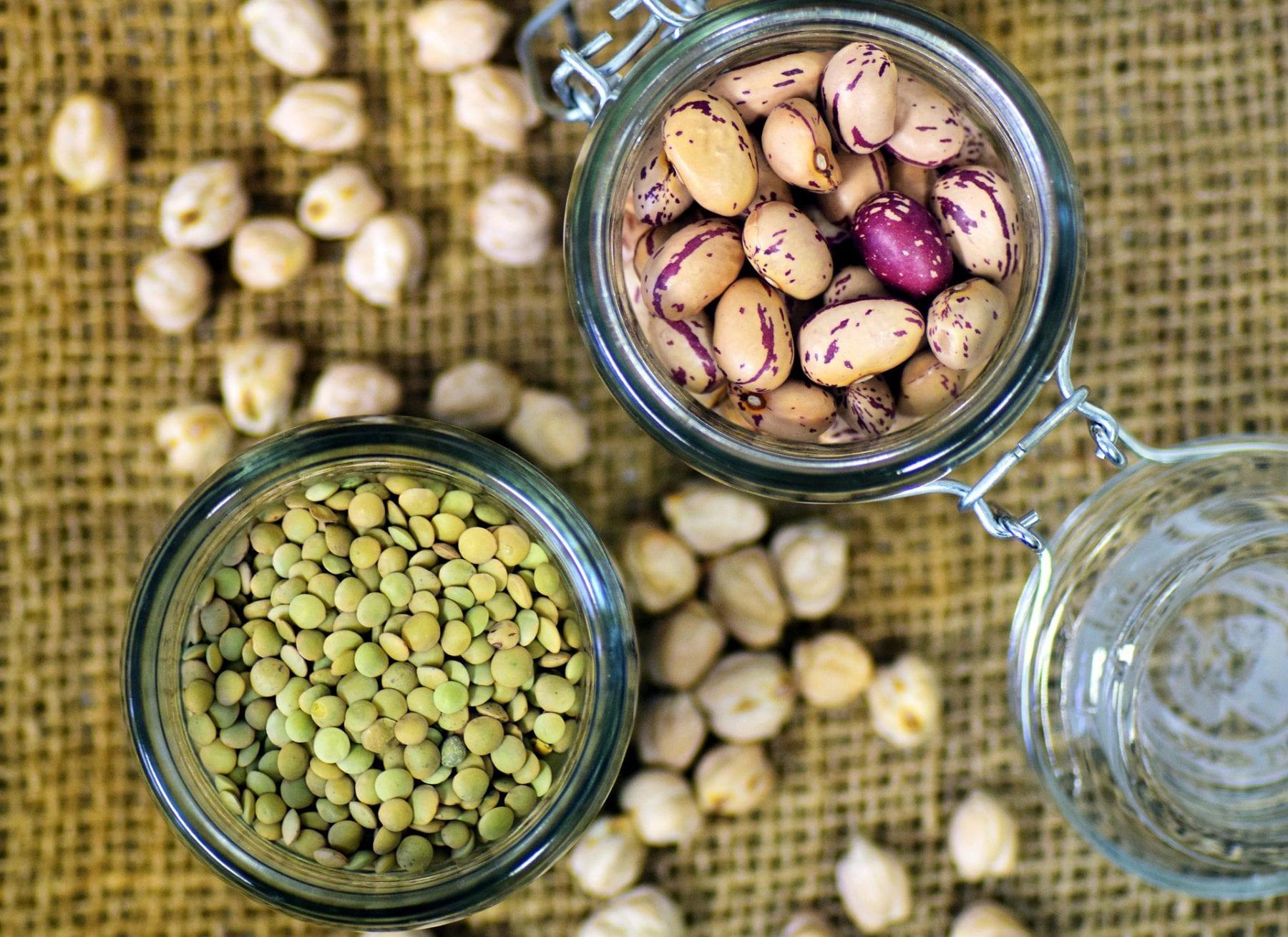 Topmoderne Vegan Guide | Grønne proteiner til en vegansk livsstil KM-86