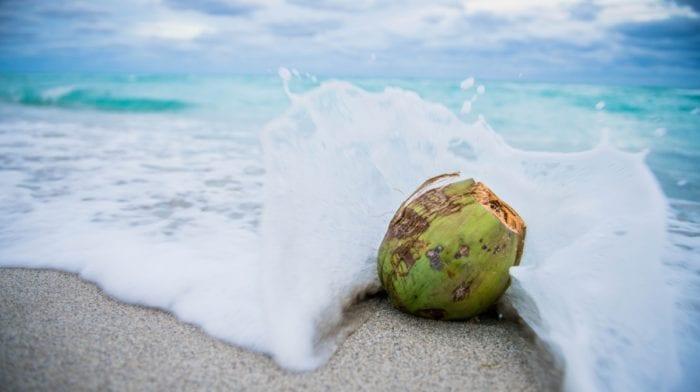 Coco loco med kokosvand | En sund og naturlig energidrik