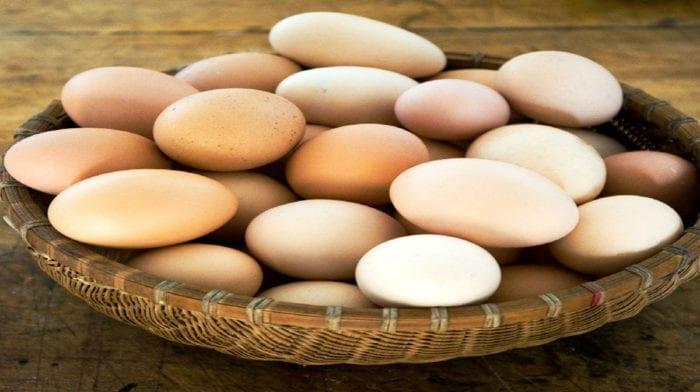 Виды яиц. Какие полезнее?