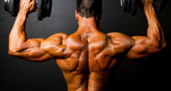 Лучшие упражнения для широчайших мышц спины (крыльев)